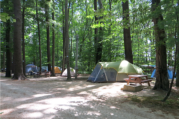 Tent Site at Tidewater Campground
